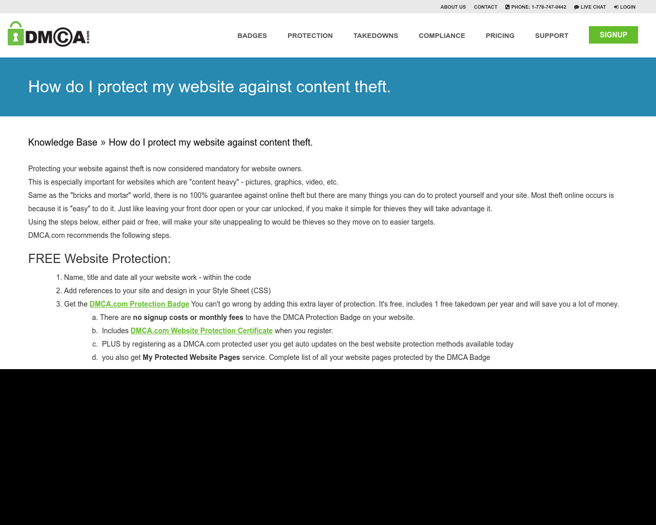 How do I protect my website against content theft